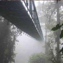 panama_fog